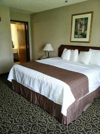 Best Western Inn At Coushatta: king room