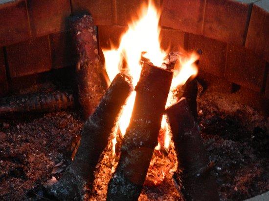 Hinckley's Dreamwood Cabins: Hinckley's Fire Pit