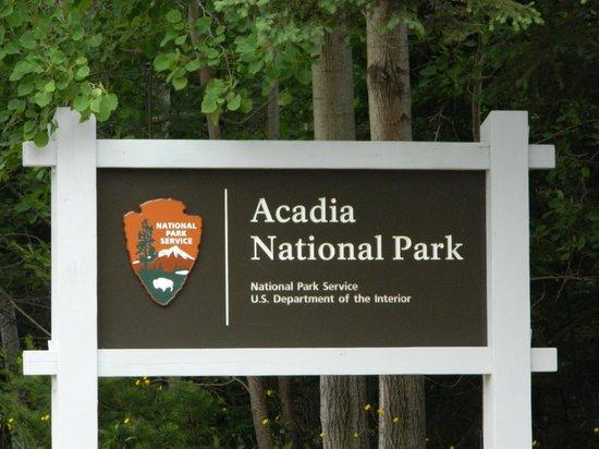 Hinckley's Dreamwood Cabins: Acadia National Park