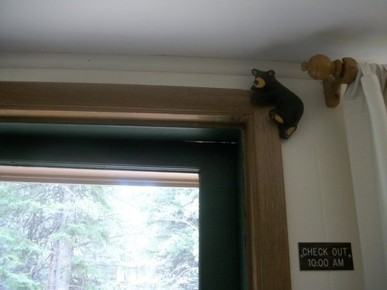 """River Spruce: a bear """"hanging"""" out on the door in our cabin"""