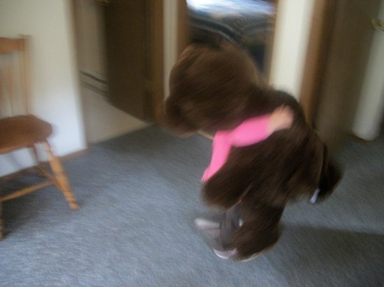 River Spruce: There was a huge bear in our room...our then 2 year old LOVED!