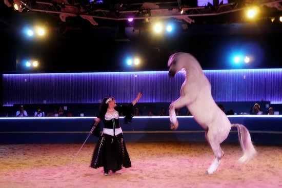 The Dancing Horses Theatre: Legacy Lives On