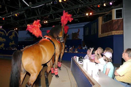 The Dancing Horses Theatre: Baskin's Legacy