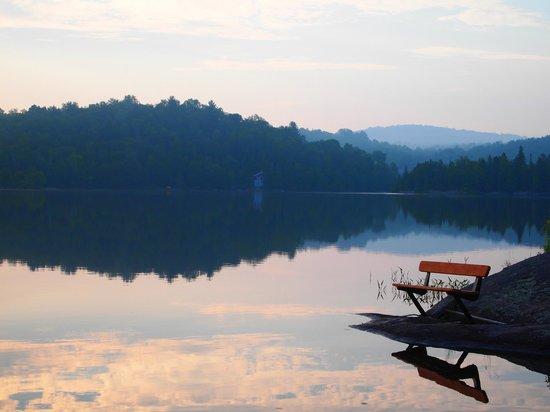 Domaine Du Lac Champagneur: Lake View