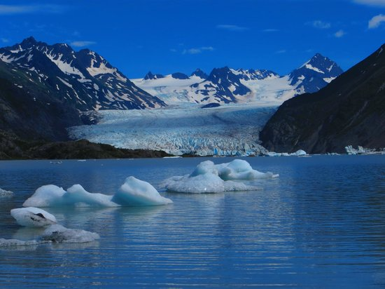 Kachemak Bay State Park : Grewingk Glacier lake