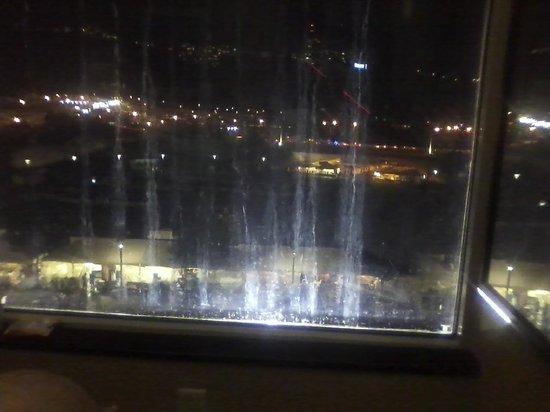 Wyndham Grand Pittsburgh Downtown : Filthy windows