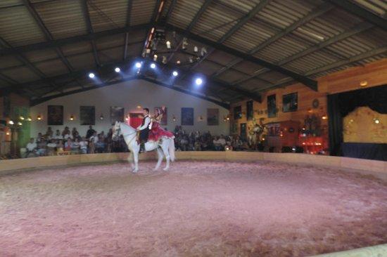 Theatre Equestre Camarkas : Camarkas