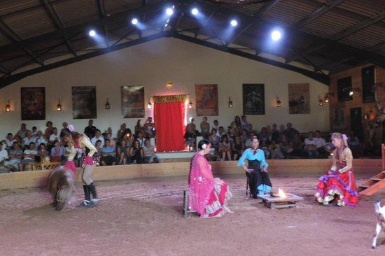 Theatre Equestre Camarkas : la légende de Sara