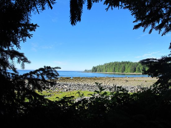 Mussel Beach Campground: View from camp