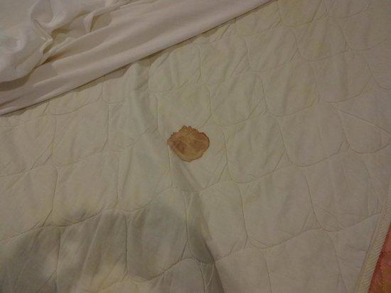 Port Hedonia: Blood like stain on matress pad