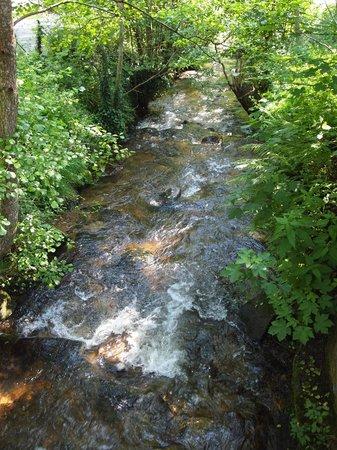 Logis de la Poste : Très agréable petite rivière qui passe à coté de l'hôtel