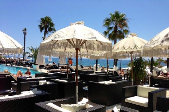 Purobeach Marbella: Pool area