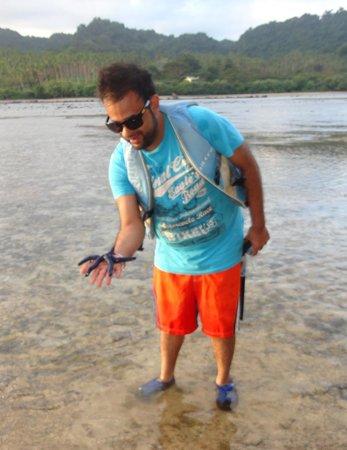 Savasi Island Villas: Blue Star Fish