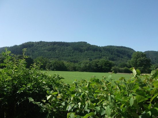 Llety Betws: walk to the village from hotel