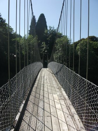 Llety Betws: Suspension bridge