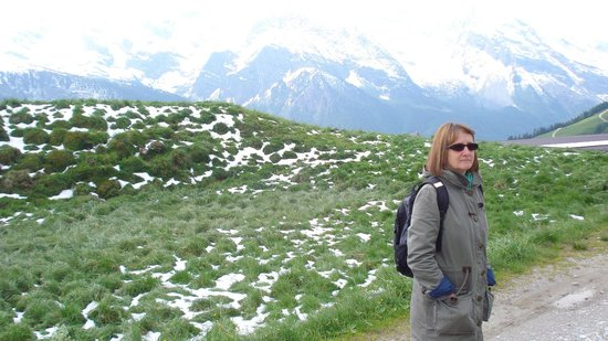 Hotel Alpenhof Hintertux: Marmots live up here above 2000 metres