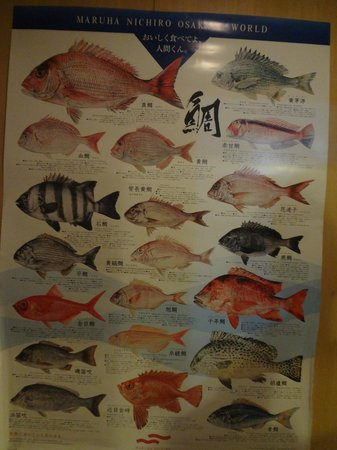 Kaihomaru : a poster of the different types of japanese fish.