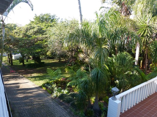 St. Lucia Wetlands Guesthouse: Jardin