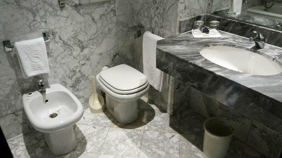 Conference Florentia Hotel: Old but large clean toilet