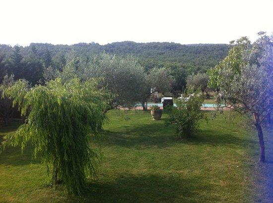 Agriturismo Del Quondam Vittorio: Vista fronte appartamento 1