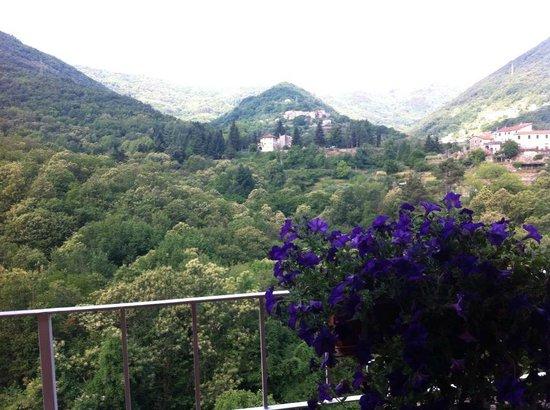 Agriturismo Locanda del Papa: Vista dalla terrazza (dove si fa colazione)