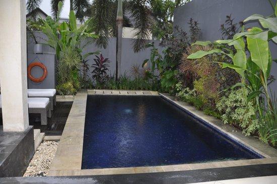 The Seminyak Suite Private Villa: Pool