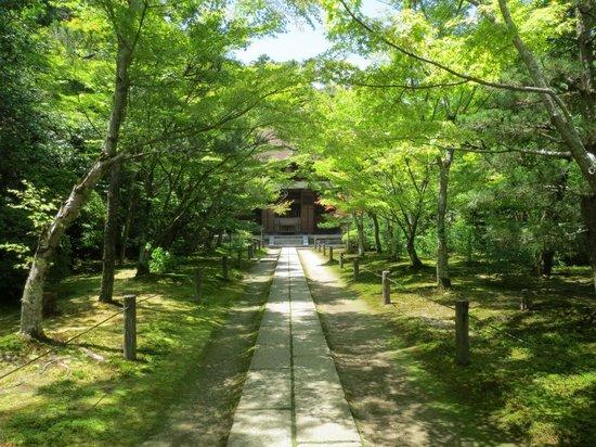 Restaurantes en Kyotanabe
