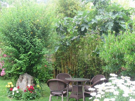 Posada Laura: jardín
