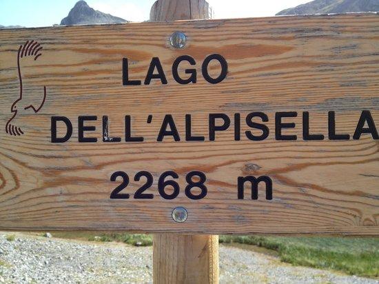Hotel Posta: Alpisella