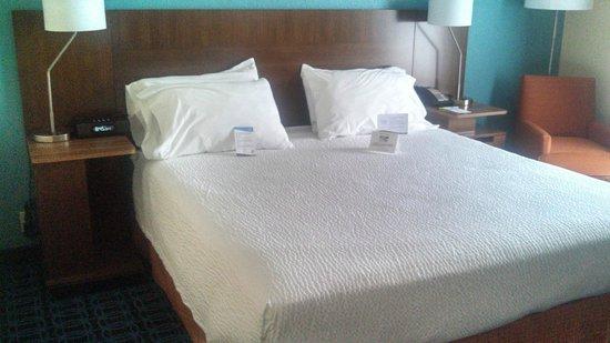 Fairfield Inn & Suites Allentown Bethlehem/Lehigh Valley Airport : King