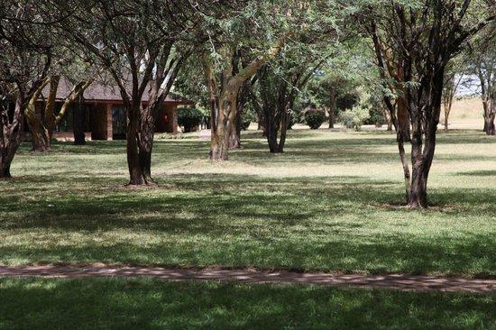 Keekorok Lodge-Sun Africa Hotels: Здесь ночью могут появиться бегемоты