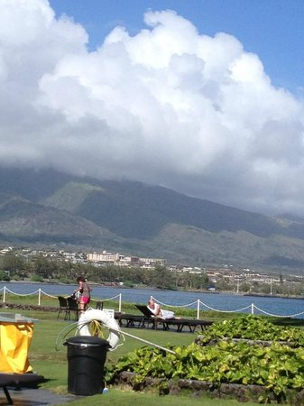 Maui Seaside Hotel: View from the rear of hotel