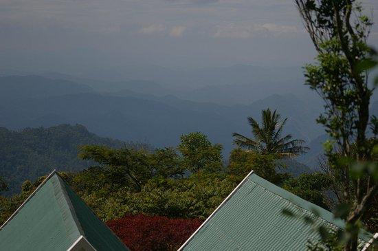 Ambady Estate: Munnar Hills view