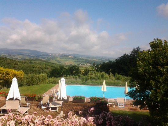 Podere il Pino: the swimming pool