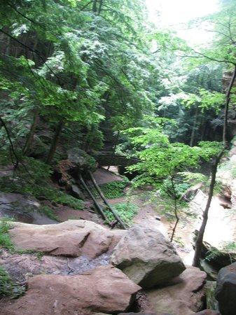 Hocking Hills State Park: Hocking Hills path