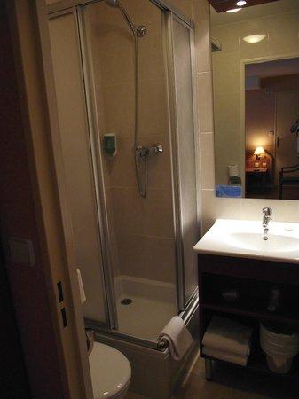 Classics Hotel Bastille : uno dei due bagni