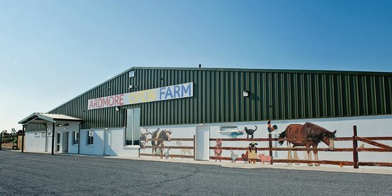 Ardmore Open Farm & Mini Zoo