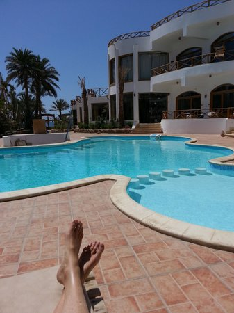 Red Sea Relax Resort: Relaxing by the poolside