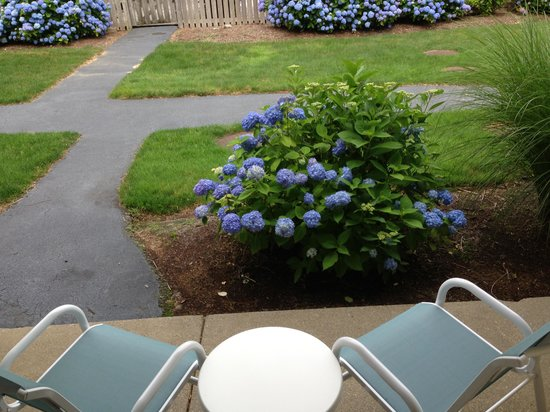 All Seasons Resort: courtyard patio room