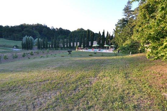 "Agriturismo ""La Topaia"": Panorama con vista piscina"