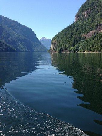 Sunshine Coast Tours: flat calm waters inside Princess Louisa Inlet