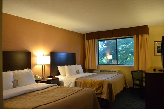 Comfort Inn at Maplewood: Room 343