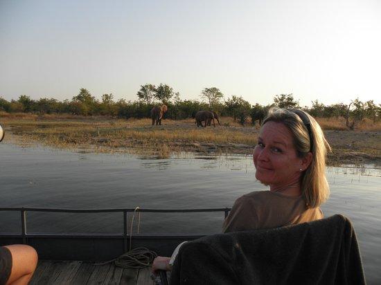 Musango Safari Camp: Tierbeobachtungen