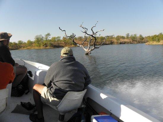 Musango Safari Camp: Ausfahrt mit Steve.