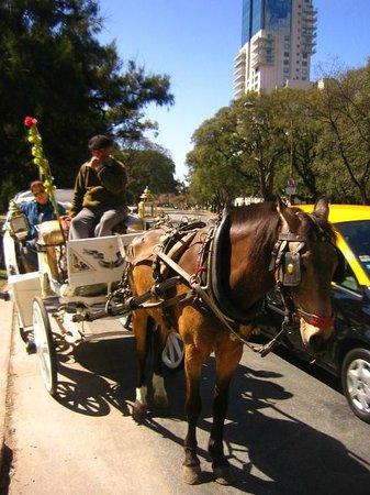 Ritz Hostel: Dario y Dorys in carriage trip Santelmo