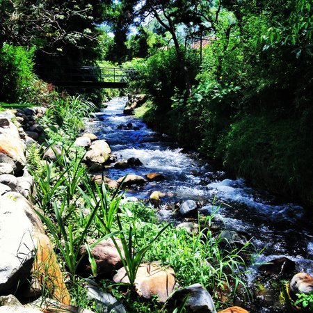 Hostal Refugio del Rio: The river that runs behind the hostel