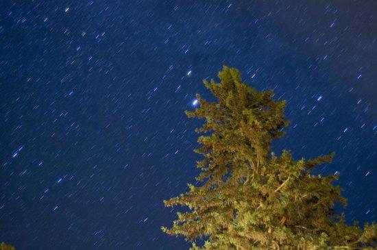 Lumina Resort : Muskoka sky at night from Lumina