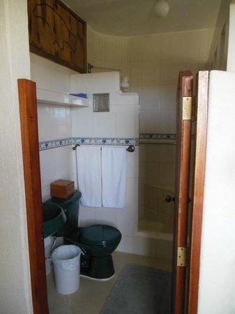 Casa Iguana Mar y Sol: Lobo suite bathroom