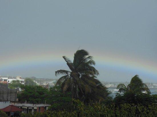 Casa Iguana Mar y Sol: Rainbow