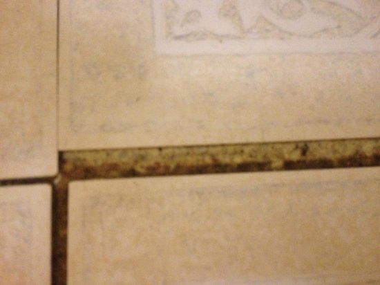 Red Roof Inn Macon: floor falling apart and nasty
